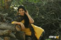 Sruthi Ramachandran in Chanakya Thanthram (7)