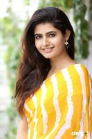 Ashima Narwal Latest Pictures (5)