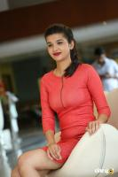 Krutika Singh Rathore New Photos (11)