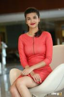 Krutika Singh Rathore New Photos (12)