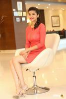 Krutika Singh Rathore New Photos (14)