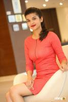 Krutika Singh Rathore New Photos (17)