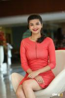 Krutika Singh Rathore New Photos (7)