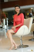 Krutika Singh Rathore New Photos (9)