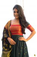 Shalini Pandey Latest Images (19)