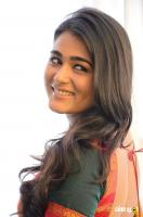 Shalini Pandey Latest Images (26)