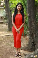 Arthana Binu at Sema Movie Press Meet (1)