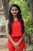 Arthana Binu at Sema Movie Press Meet (3)