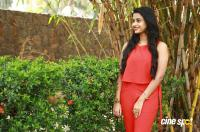 Arthana Binu at Sema Movie Press Meet (8)