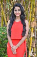 Arthana Binu at Sema Press Meet (11)