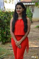 Arthana Binu at Sema Press Meet (3)