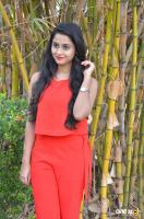 Arthana Binu at Sema Press Meet (7)