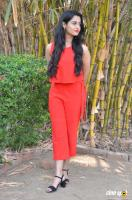 Arthana Binu at Sema Press Meet (8)