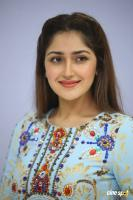 Sayesha Saigal at Chinna Babu Success Meet (22)