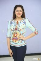 Sayesha Saigal at Chinna Babu Success Meet (26)