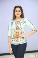 Sayesha Saigal at Chinna Babu Success Meet (33)