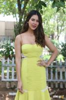 Sonam Bajwa at Kaatteri Press Meet (3)