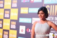 Eesha Rebba at SIIMA Awards 2018 Red Carpet (10)