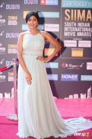 Eesha Rebba at SIIMA Awards 2018 Red Carpet (5)