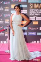 Eesha Rebba at SIIMA Awards 2018 Red Carpet (6)
