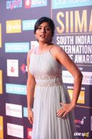 Eesha Rebba at SIIMA Awards 2018 Red Carpet (7)