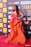 SIIMA Awards 2018 Red Carpet Day 1 (102)