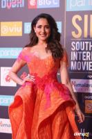 SIIMA Awards 2018 Red Carpet Day 1 (103)