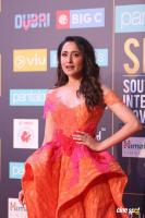 SIIMA Awards 2018 Red Carpet Day 1 (104)