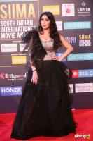 SIIMA Awards 2018 Red Carpet Day 1 (110)