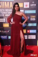 SIIMA Awards 2018 Red Carpet Day 1 (115)