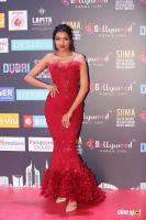 SIIMA Awards 2018 Red Carpet Day 1 (118)
