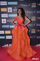 SIIMA Awards 2018 Red Carpet Day 1 (98)
