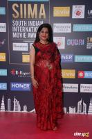 SIIMA Awards 2018 Red Carpet Day 1 (99)