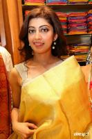 Pranitha Inaugurates Videos Silks Showroom (21)