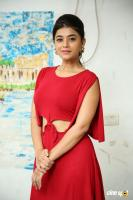 Yamini Bhaskar at Elite New Year 2019 Event (13)