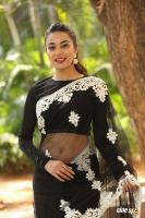 Stefi Patel at Ninnu Talachi First Look Launch (19)