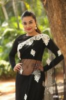 Stefi Patel at Ninnu Talachi First Look Launch (20)