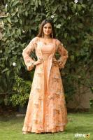 Nidhhi Agerwal Latest Gallery (1)