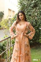 Nidhhi Agerwal Latest Gallery (14)