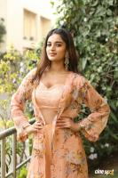 Nidhhi Agerwal Latest Gallery (15)