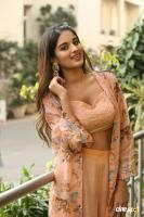 Nidhhi Agerwal Latest Gallery (16)