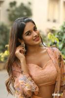 Nidhhi Agerwal Latest Gallery (17)
