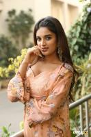 Nidhhi Agerwal Latest Gallery (20)