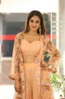 Nidhhi Agerwal Latest Gallery (25)