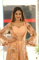 Nidhhi Agerwal Latest Gallery (27)