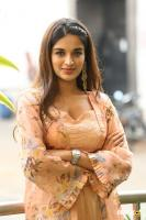 Nidhhi Agerwal Latest Gallery (9)