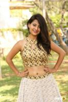Shubhangi Pant at Short Temper Movie Opening (42)