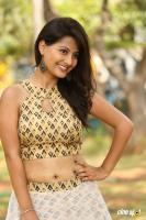 Shubhangi Pant at Short Temper Movie Opening (43)