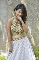 Shubhangi Pant at Short Temper Movie Opening (7)