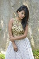 Shubhangi Pant at Short Temper Movie Opening (8)